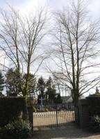 Bp11132-Heijen-hoofdstraat-.jpg