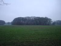 Bp10229-Vlierden-Wiegersma-begraafplaats.jpg