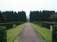 Bp10027b-Tilbrug-begraafplaats-bomen-hoflaan2.jpg