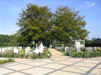bp09097a-Zierikzee-Barabara-rk-overzicht1.jpg