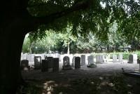 Bp08312-Nieuwerkerk-oude-begraafplaats.jpg