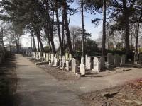 Bp08282c-Naaldwijk-Algemene_begraafplaats2.jpg
