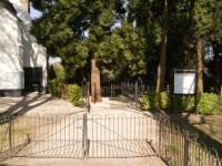 Bp05101-Zoelmond-algemene-begraafplaats1.jpg
