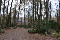 bp05016-Hoog-Soeren-Assel-natuurbegraafplaats-11.jpg