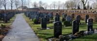 Bp11241-Nederweert-alg-begraafplaats-kreijelcenter.jpg