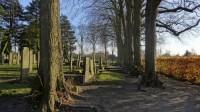 Bp01224-Scheemdag-algemene-begraafplaats-hoflaan.jpg