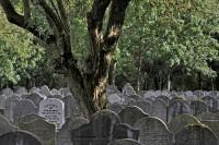 Bp07158-Diemen-Joodse-begraafplaats-Landlust.jpg