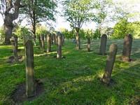 bp01215-Bad-Nieuweschans-Joodse_begraafplaats.jpg