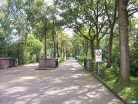 bp02163a-Heerenveen-BP-Schoterhof.jpg