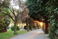 bp05019-Loenen-PKn-begraafplaats1.jpg