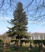 bp05051-Rekken-protestantse-begraafplaats1.jpg