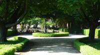 Bp01151-Sappemeer-Oost-begraafplaats.jpg