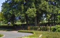 Bp04238-Den-Ham-algemene-begraafplaats-molenstraat.jpg