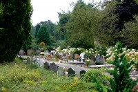 Bp05151-Ermelo-Gemeentelijke-Algemene-begraafplaats-Ermelo1.jpg