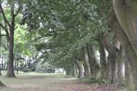 Bp06138b-Veenendaal-oude-begraafplaats1.jpg