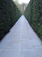 Dachau_monument-3.jpg