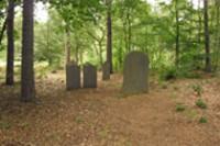 Bp05073-Vorden-Joodse-begraafplaats-Wildenborch1.jpg