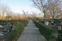bp10048-Breda.jpg