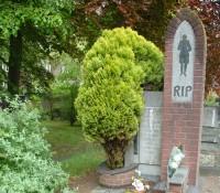 Bp10515-Waspik-Carmelietenstraat.jpg