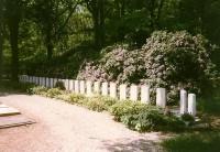 bp05130a-Ede-algemene-begraafplaats-ere-graven-21.jpg