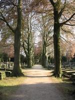 bp05288a-Nijmegen-Begraafplaats_Daalseweg1.jpg