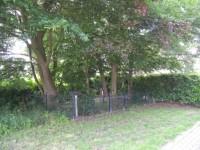 bp04152-Den-Nul-joodse-begraafplaats.jpg