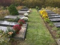 Bp05433-Dreumel-begraafplaats-.jpg