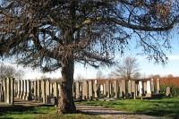 Bp01287-Ommelanderwijk-joodse-begraafplaats.jpg