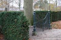 Bp01286-Ommerlanderwijk-nederlands-hervormd.jpg